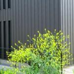 ガルバニウム鋼板のイメージ