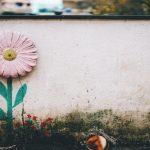 見積もりを頼むべき業者の選び方!絶対に外壁塗装に失敗しないために